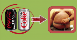 Diet Soda Actually Makes You Fatter than Regular Soda
